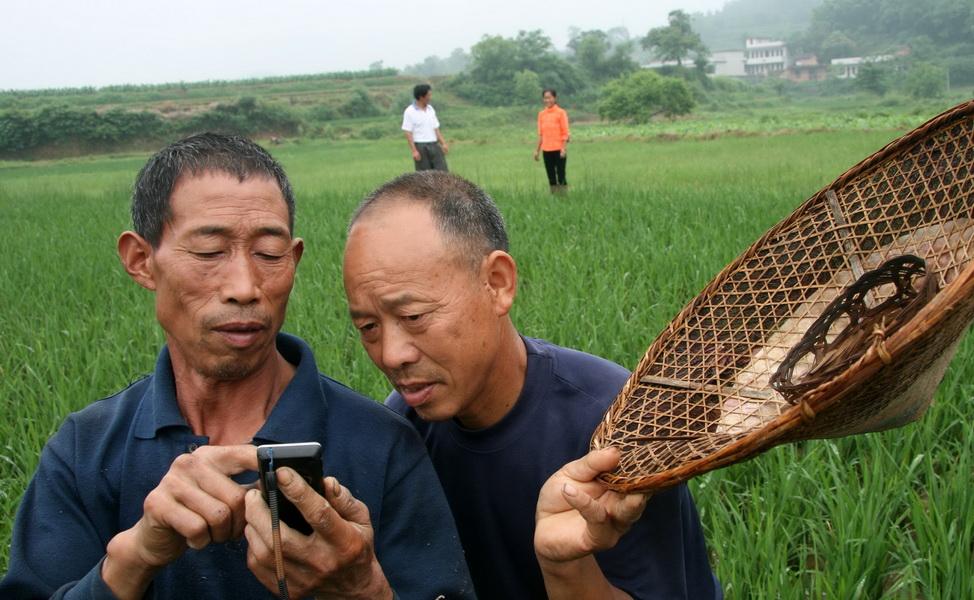 【連載】中国のインターネット事情について(2)インターネットを使用しているユーザーの属性とデバイス